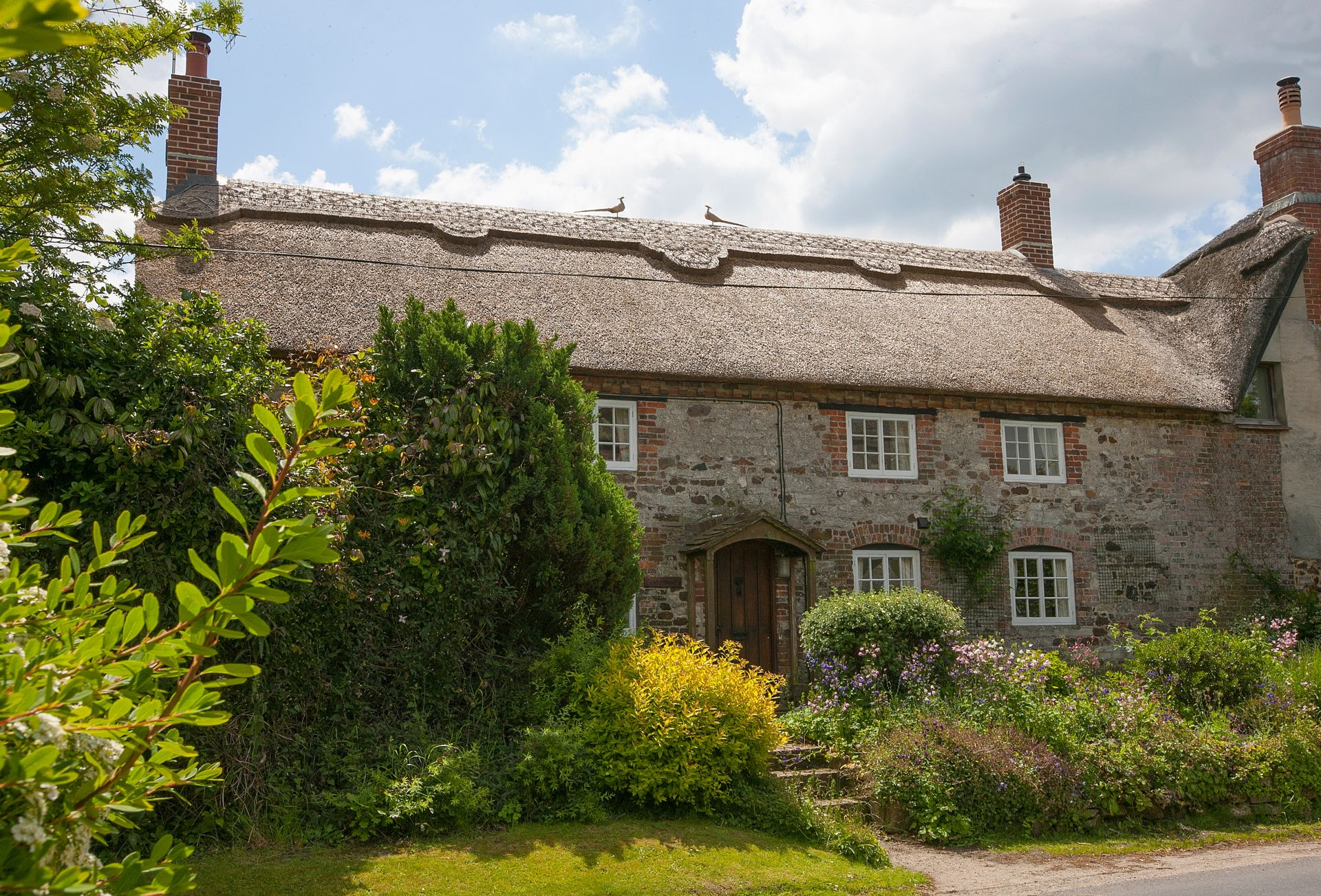 Dorset - Holiday Cottage Rental