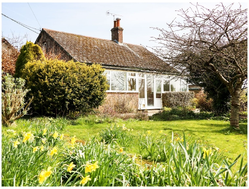 Click here for more about Sunny Croft