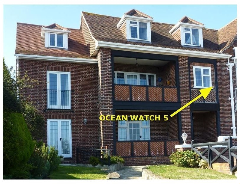 Click here for more about Ocean Watch 5