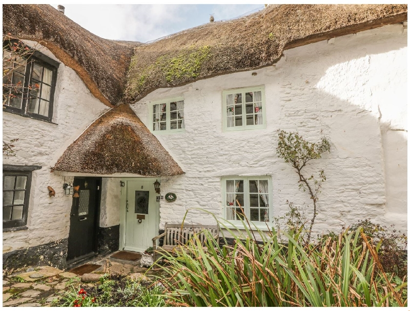 Click here for more about Sweet Tumbledown
