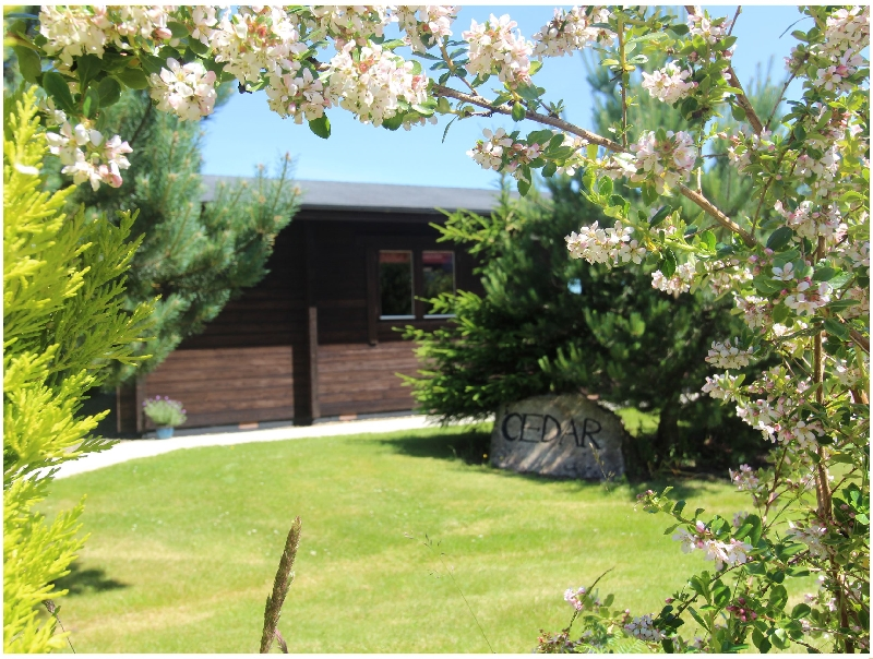 Click here for more about Cedar Lodge